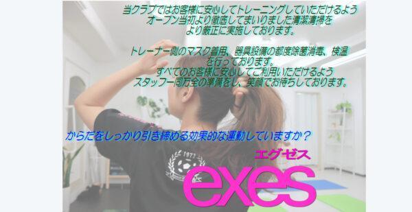 EXEs.PJ1