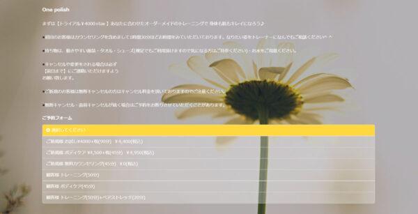 One polish(ワンポリッシュ)